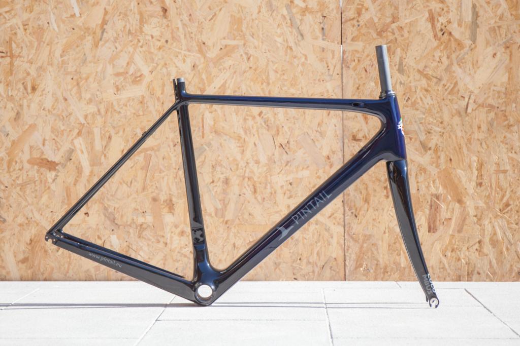 Custom Painted Columbus Genius Road Bike