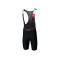 Colnago Degrade Bib Shorts Back